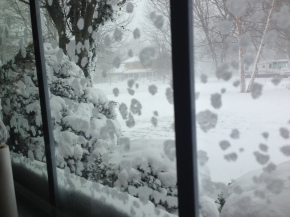 The winter wonderland outside my window.